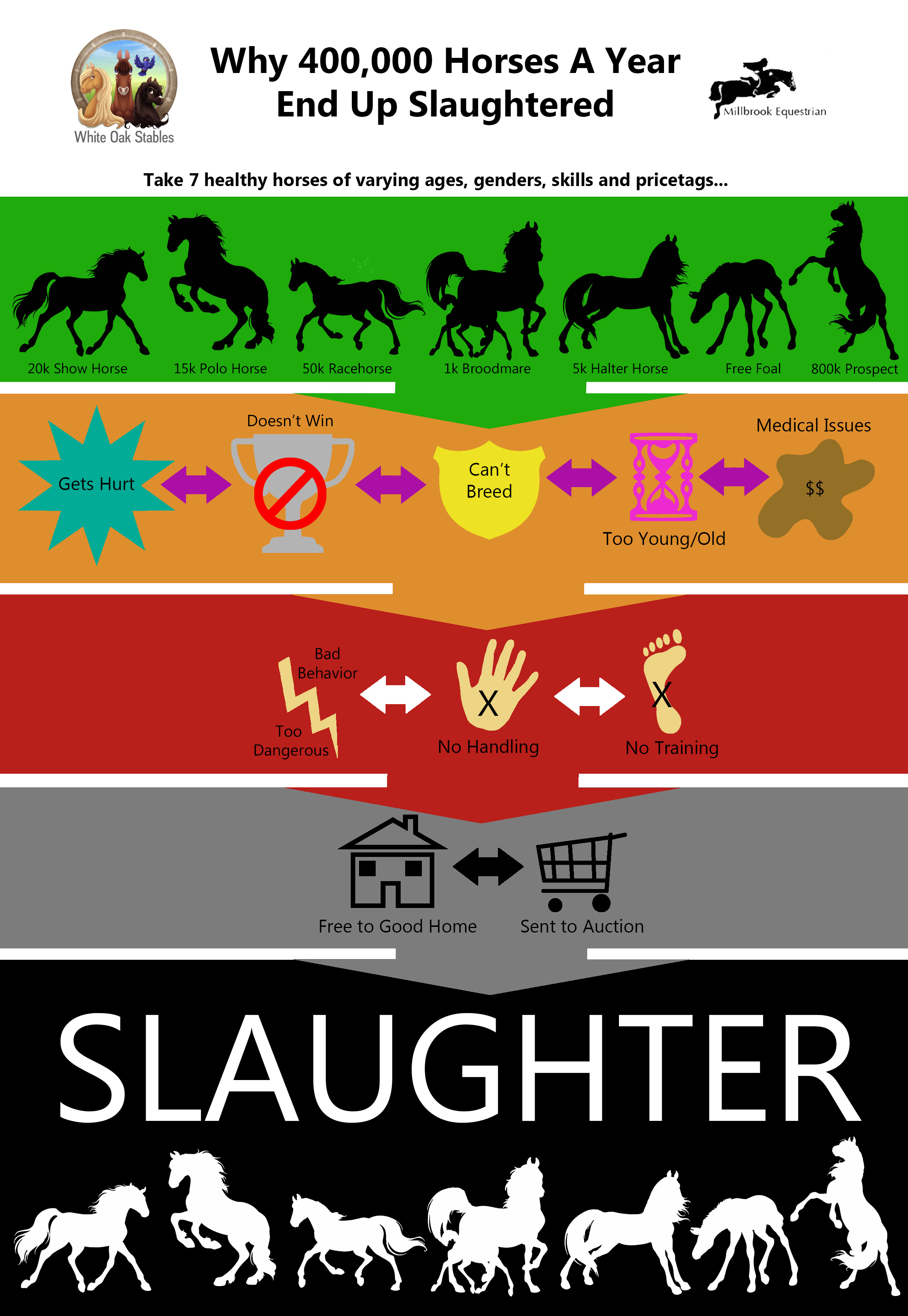 Why Horses Go To Slaughter