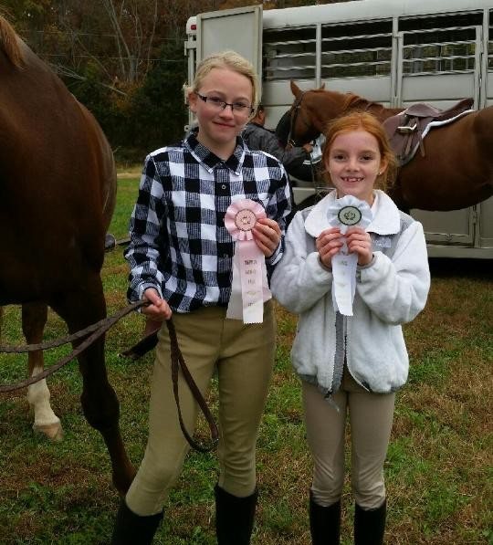 Southern Heritage Horse Show