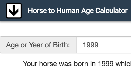 Horse Age in Human Years