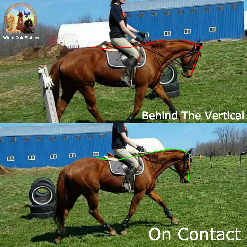 Visual: Behind the Vertical