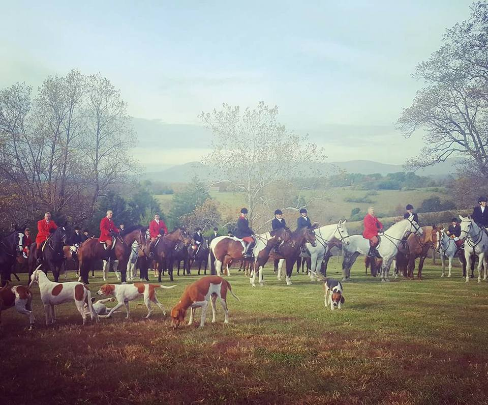 Fox Hunting Fun