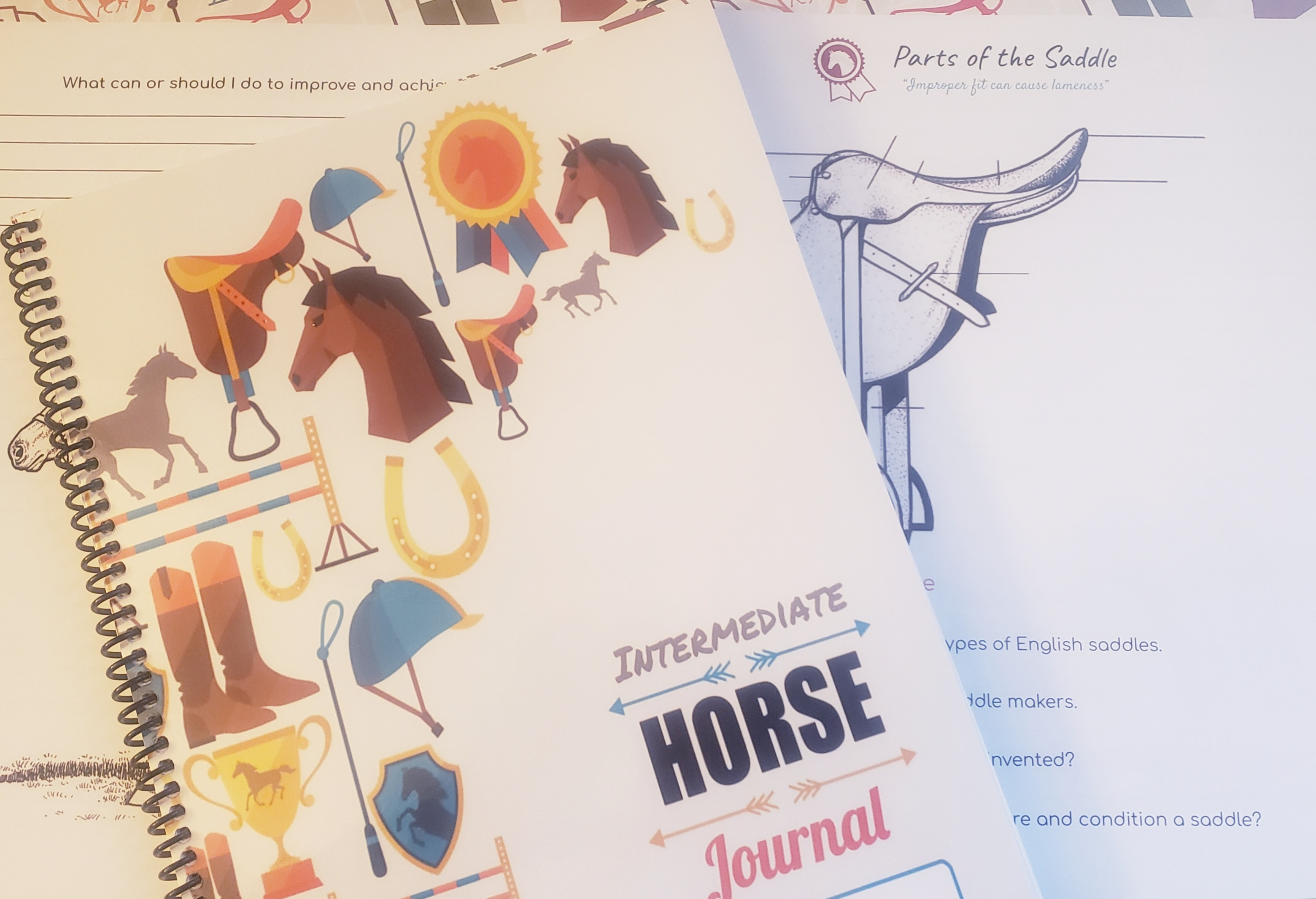 Intermediate Horse Journal Coloring Book