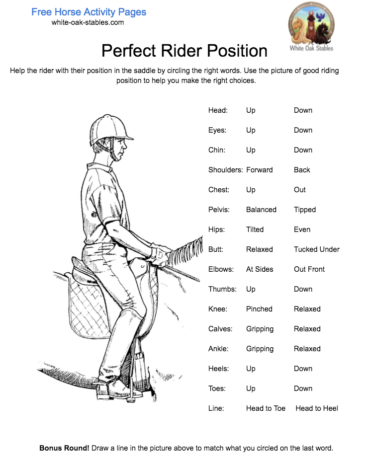 Perfect Rider Position – Activity Page