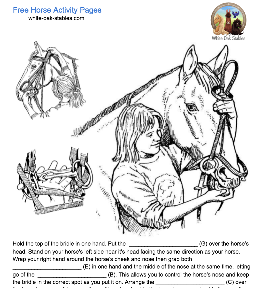 How To Put on a Bridle Fill In The Blanks – Activity Page